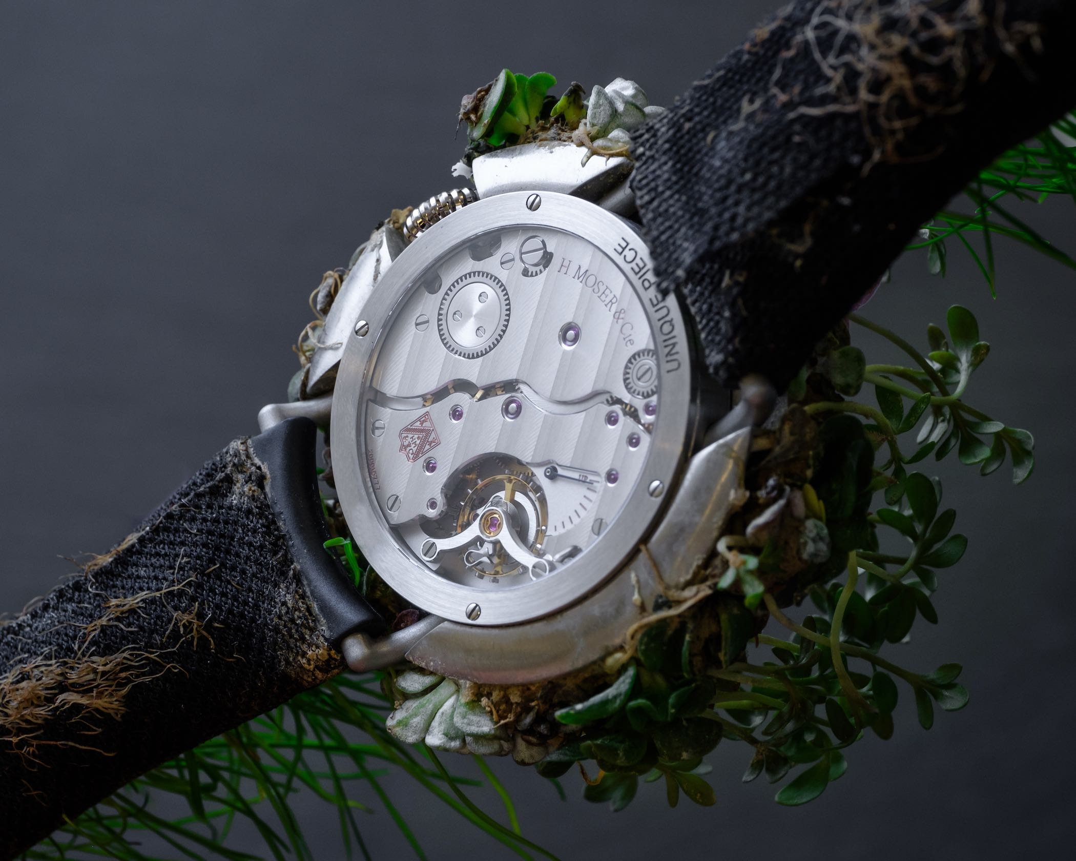 H Moser & Cie Nature Watch Mechanical SIHH 2019